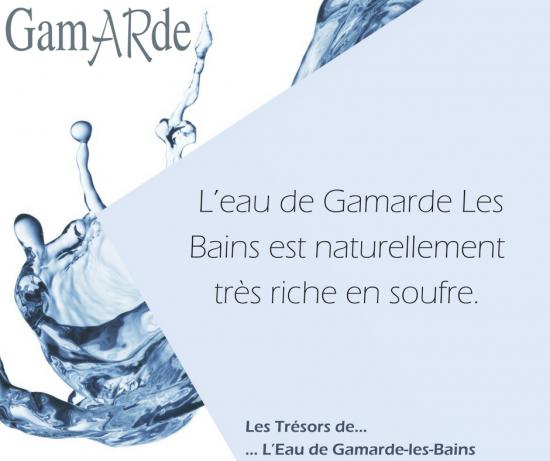 來自法國的生命之源,GamARde天然活泉水
